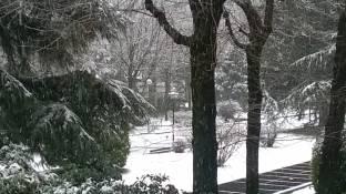 Meteo Varese: neve fino a lunedì, qualche possibile rovescio martedì