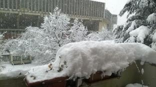 palasport con neve