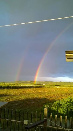 arcobaleno matrimoniale