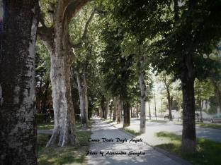 Cuneo Viale Angeli
