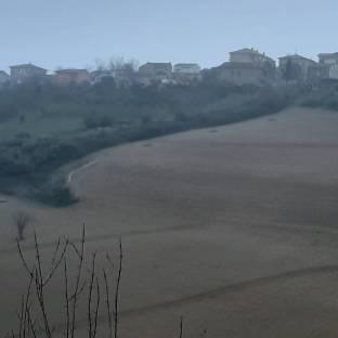 Fotosegnalazione di Fermo