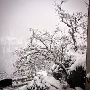 Meteo Cosenza: neve venerdì, neve nel weekend