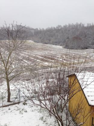 Cenciara Sotto La Neve