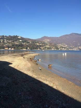 Lago a Como
