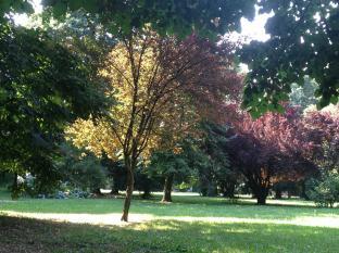 Estate Al Parco Di Villa Sioli