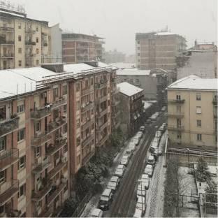 Fotosegnalazione di Avellino