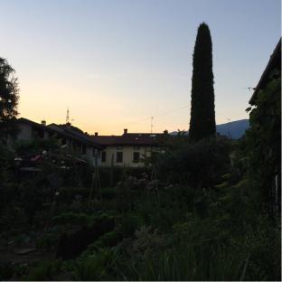 Tram tramonto