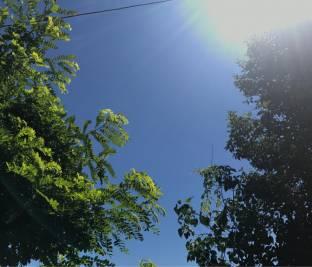 Caldo tropicale