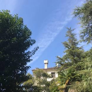 Fotosegnalazione di Treviso