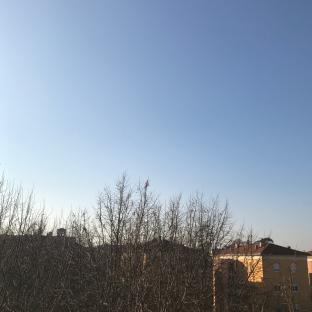 Fotosegnalazione di Piacenza