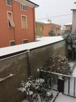 Nevica 27218 1106