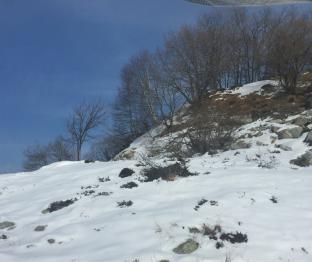 La quiete prima della tempesta di neve