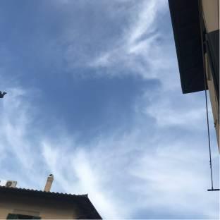 Livorno centro
