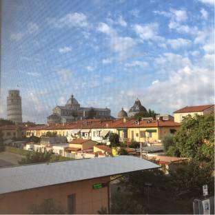 Fotosegnalazione di Pisa