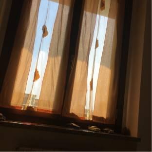 oltre la finestra