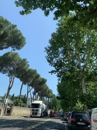 Firenze careggi