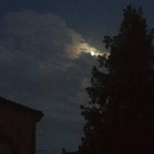 Fotosegnalazione di Mantova