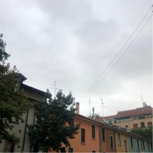Pioviscola