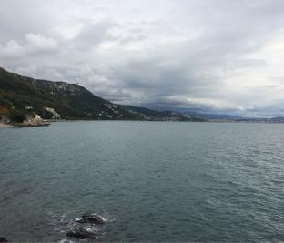 Monte grisa