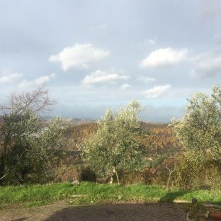 Fotosegnalazione di Urbino