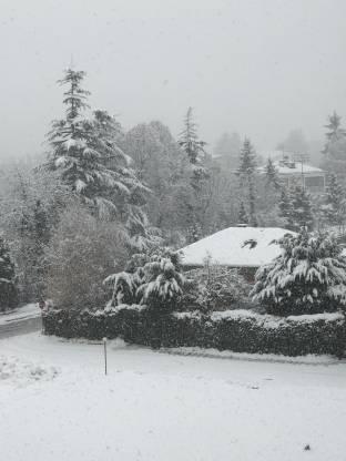 Neve in atto a centro