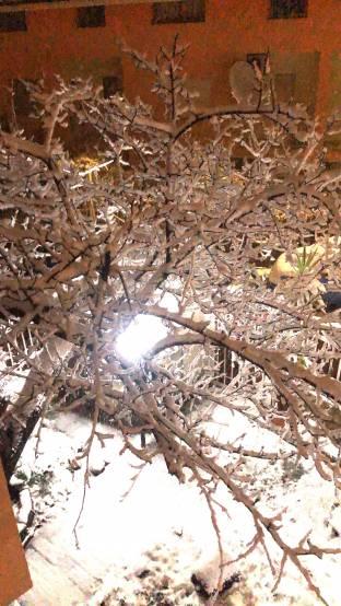 Nevicata a Castrolibero