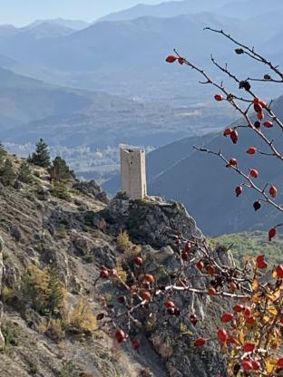 Torre pentagonale