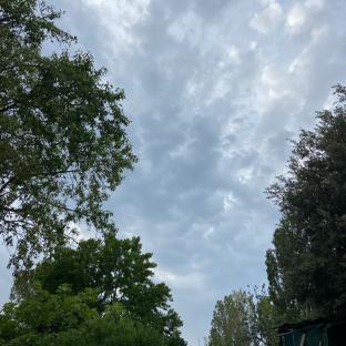 Piovera'