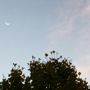 Ravenna 04.08.21 h. 06.38