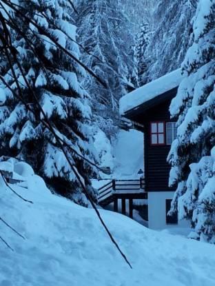 Meteo Belluno: neve almeno fino a venerdì