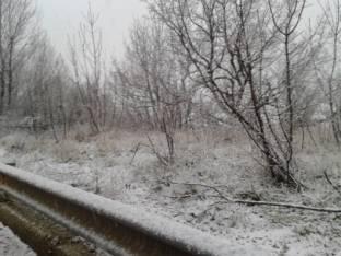 Meteo Biella: neve venerdì, neve nel weekend
