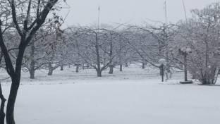 Meteo Padova: domenica neve, poi piogge