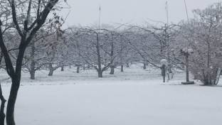 Meteo Frosinone: piogge nel weekend, neve lunedì