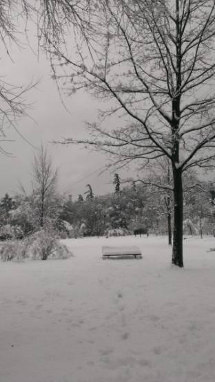Meteo Trento: neve lunedì, molte nubi martedì, discreto mercoledì