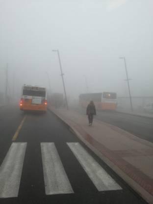 Meteo Padova: nebbie almeno fino a venerdì