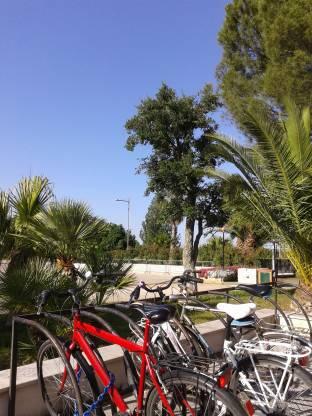 Meteo Andria: bel tempo almeno fino a martedì