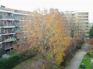autunno a Monza