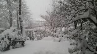 Meteo Cuneo: neve fino al weekend