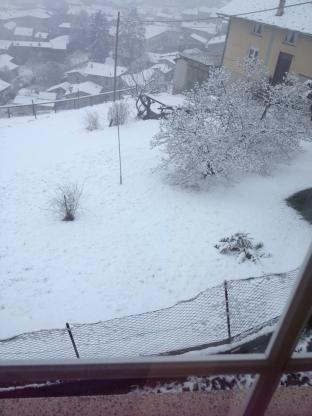 gran bella nevicata