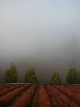 Meteo Siena: bel tempo giovedì, nebbie venerdì, bel tempo sabato