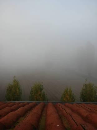 Meteo Treviso: nebbie fino a venerdì, molte nubi sabato