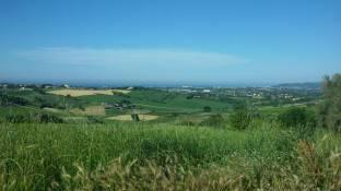 La vista da via Annibolina