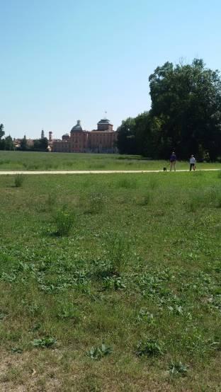 ferragosto nel parco