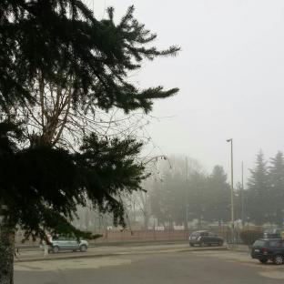 Fotosegnalazione di Vercelli