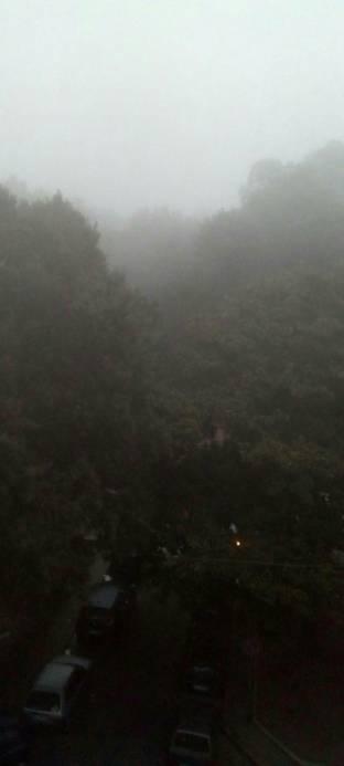 Nebbia a Capodimonte