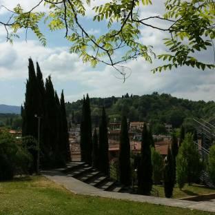 Fotosegnalazione di Montevarchi