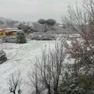 1 marzo ancora neve