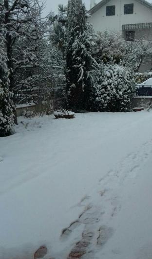 Ancora neve