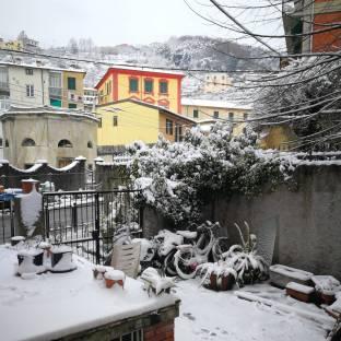 La neve nel mio giardino