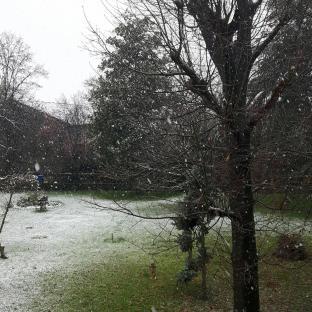19 marzo neve